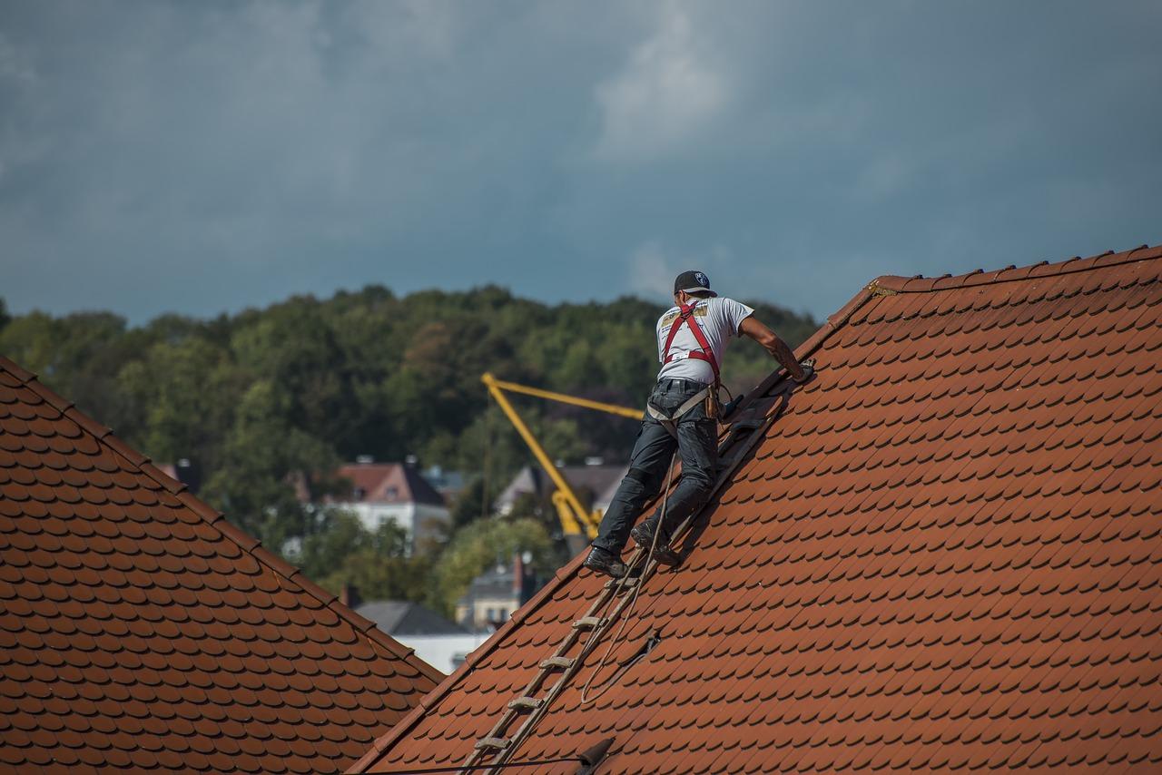 krov krovište adaptacija