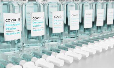korona, cjepivo, covid